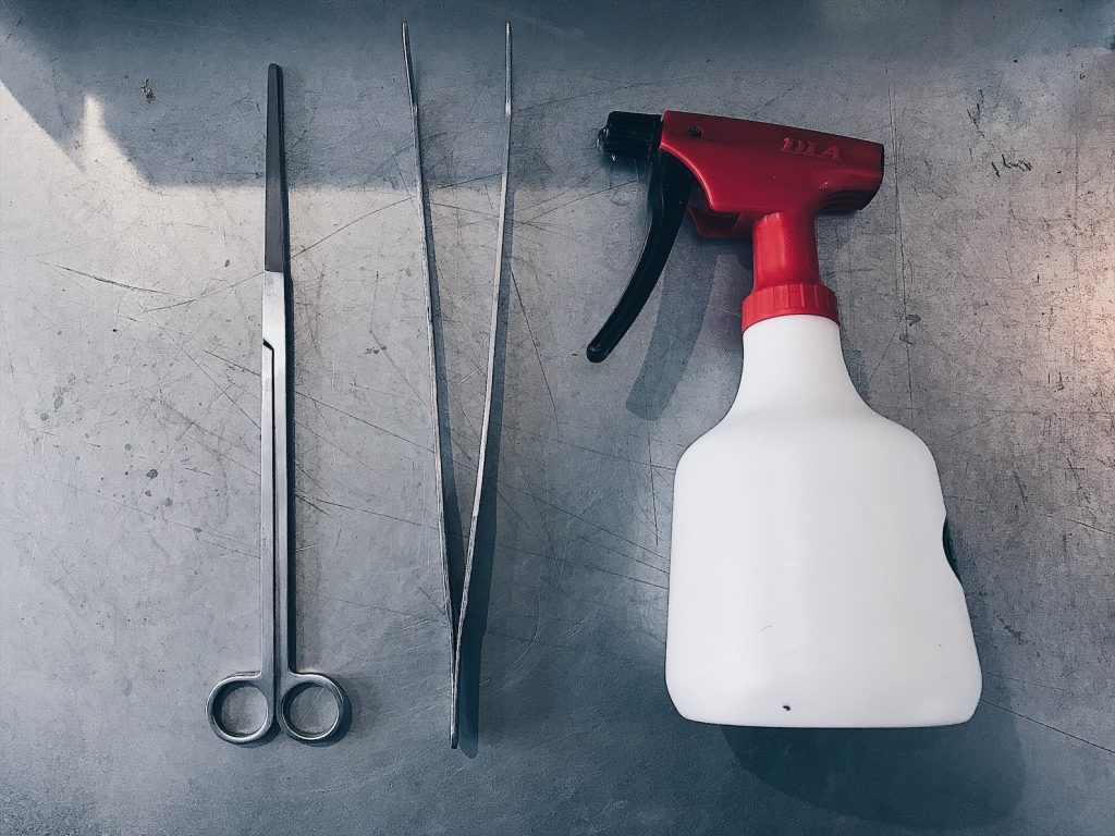 苔テラリウムに必要な道具(ハサミ、ピンセット、霧吹き)